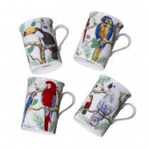 4 Assorted Tropical Parrots Mugs, Set of 4